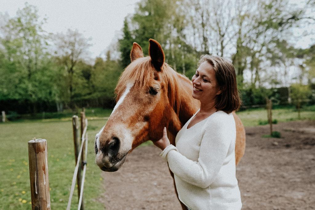 paarden coach sessie met systemisch werk